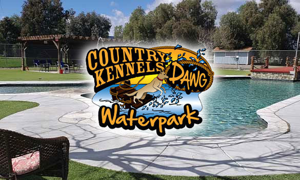 Dawg Waterpark Aside Image